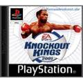 Box Champions / Knockout Kings 2001